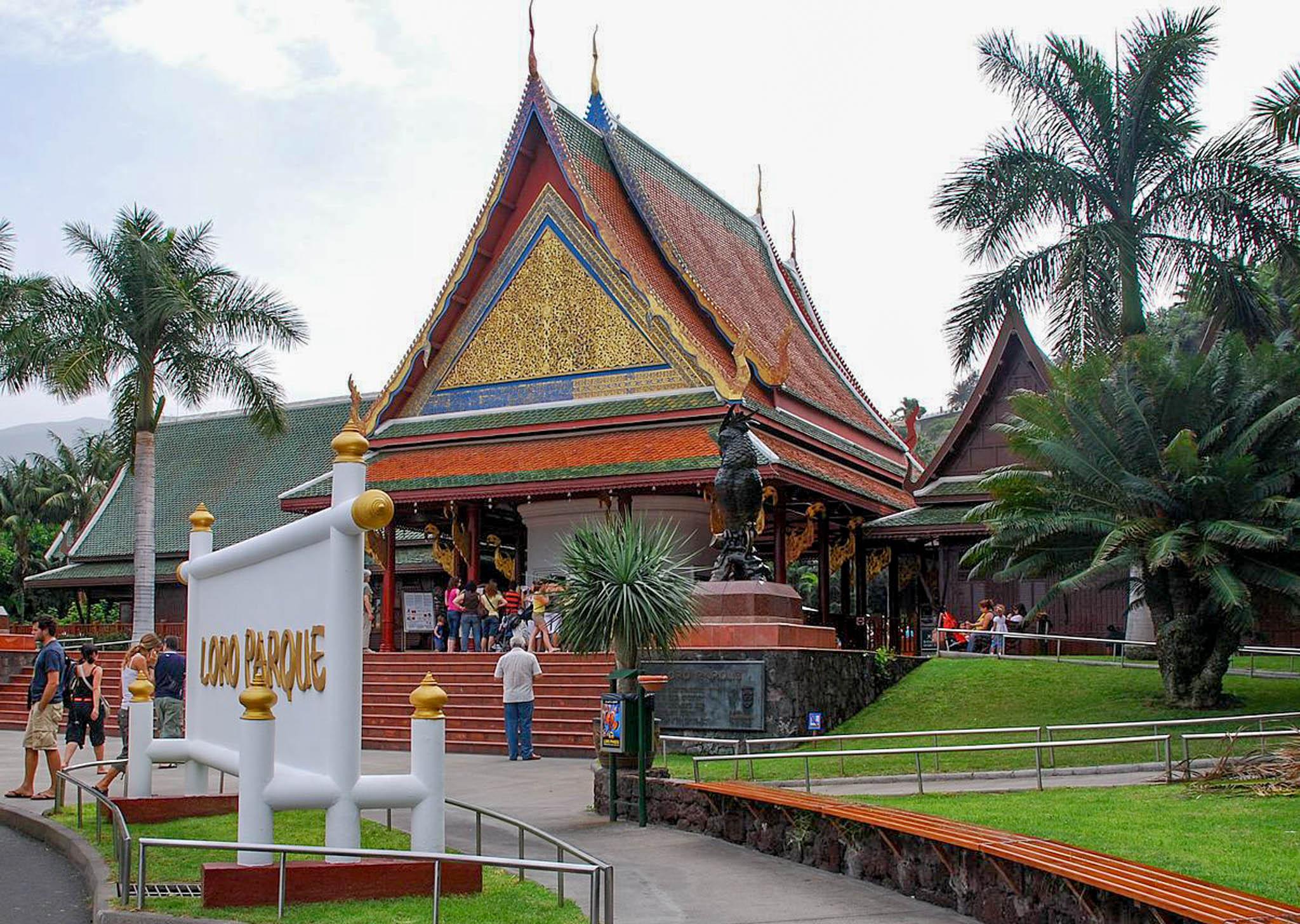 Die 3 besten Freizeitparks auf Teneriffa (Loro Parque, Siam Park, Jungle Park)