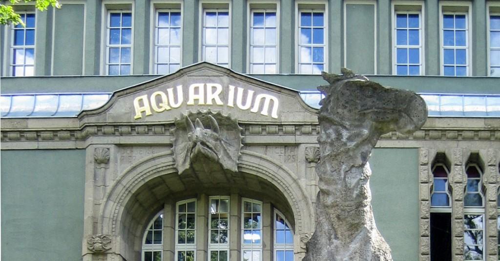 zoo aquarium berlin aktivit ten f r kinder bei regen ferientermine. Black Bedroom Furniture Sets. Home Design Ideas
