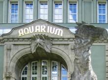 Zoo Aquarium Berlin – Aktivitäten für Kinder bei Regen