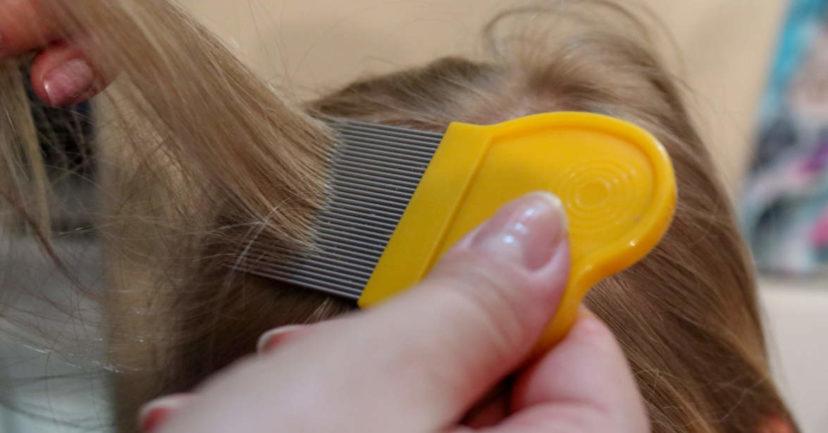 Kopfläuse im Urlaub – ein ungewolltes Mitbringsel
