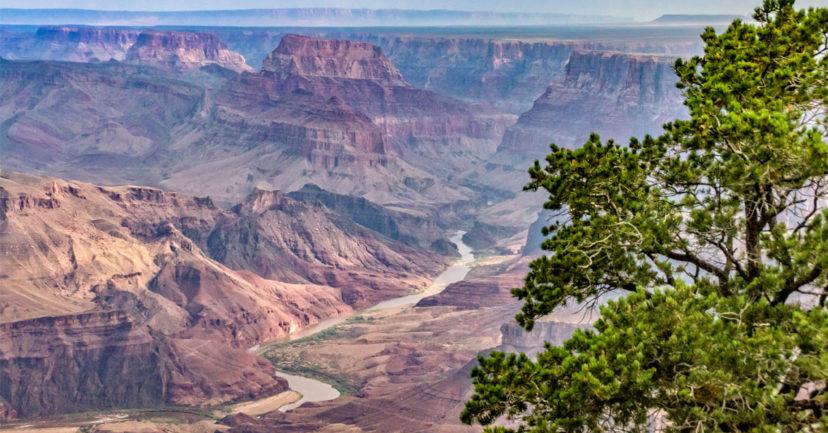 Der Grand Canyon – ein MUST auf jeder Bucket List